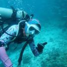 Dive+潜水员stellashen