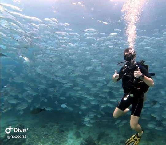 Dive+精彩瞬间,一起体验在Malaysia的潜水