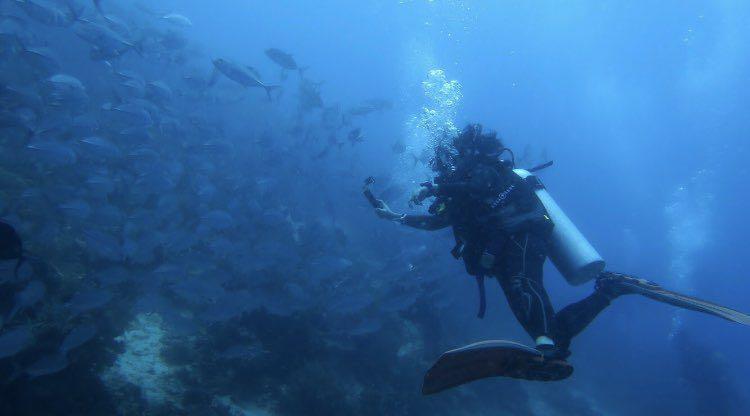 Dive+潜水员janice1212的精彩瞬间