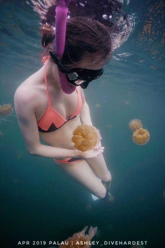 Dive+潜水员ashleycsj的精彩瞬间