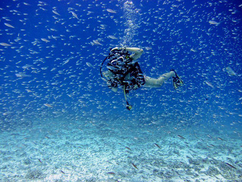 Dive+潜水员IrisHng的精彩瞬间