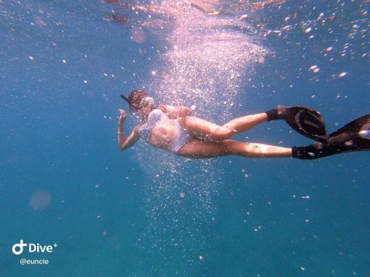 Dive+精彩瞬间,一起体验在Taipei的潜水
