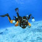 Dive+潜水员HAWK