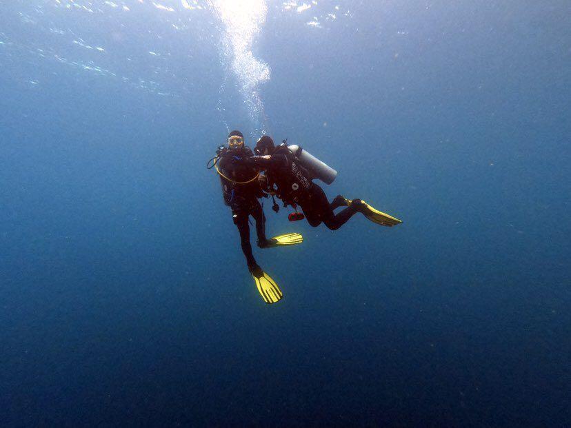 Dive+潜水员wadebear的精彩瞬间