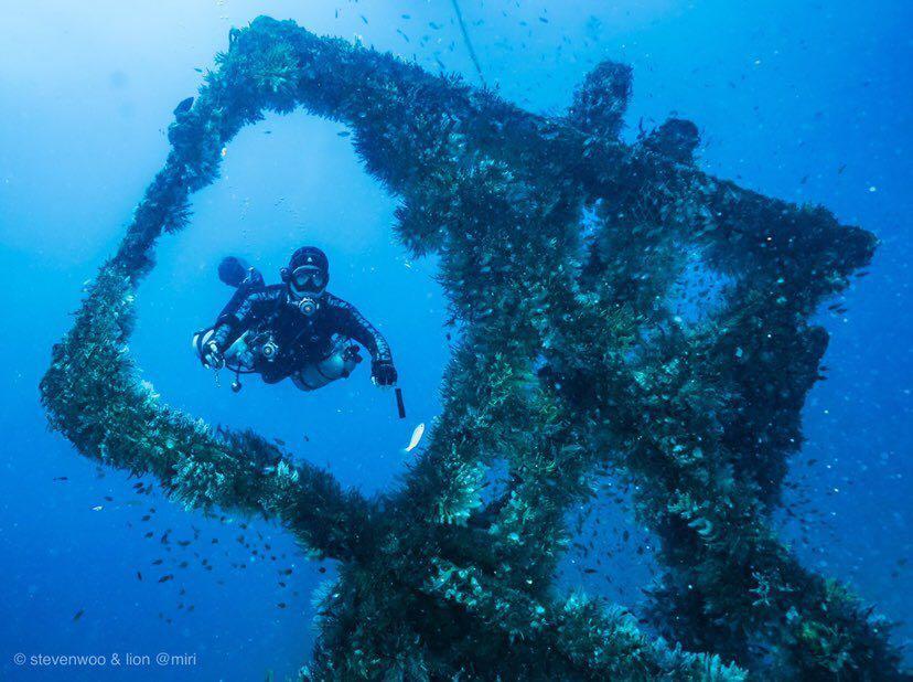 Dive+潜水员Stevenwoo的精彩瞬间