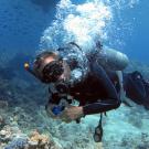 Dive+潜水员fido01