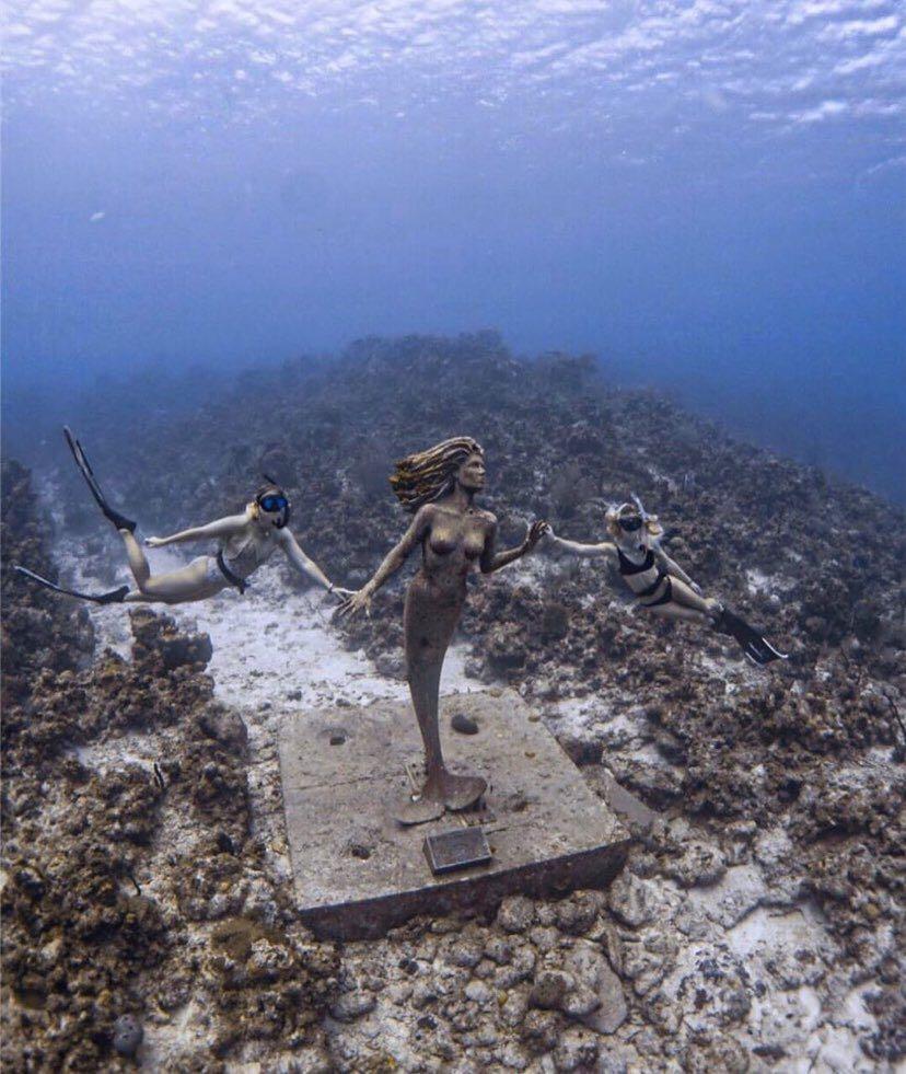 Dive+潜水员FullDayOff的精彩瞬间