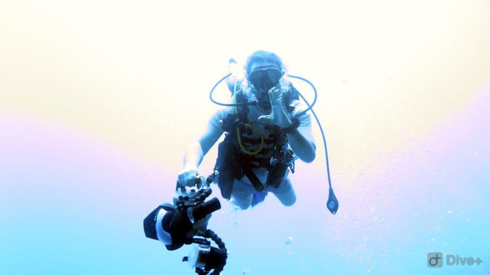 Dive+潜水员bonieboy的精彩瞬间