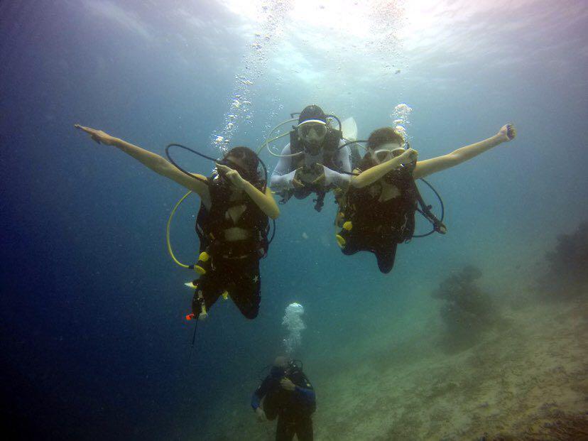 Dive+潜水员sinnynn的精彩瞬间