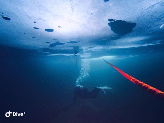 Dive+精彩瞬间,一起体验Ice Diving运动