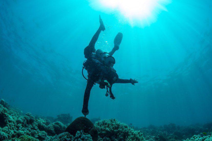 Dive+潜水员kevin3262的精彩瞬间