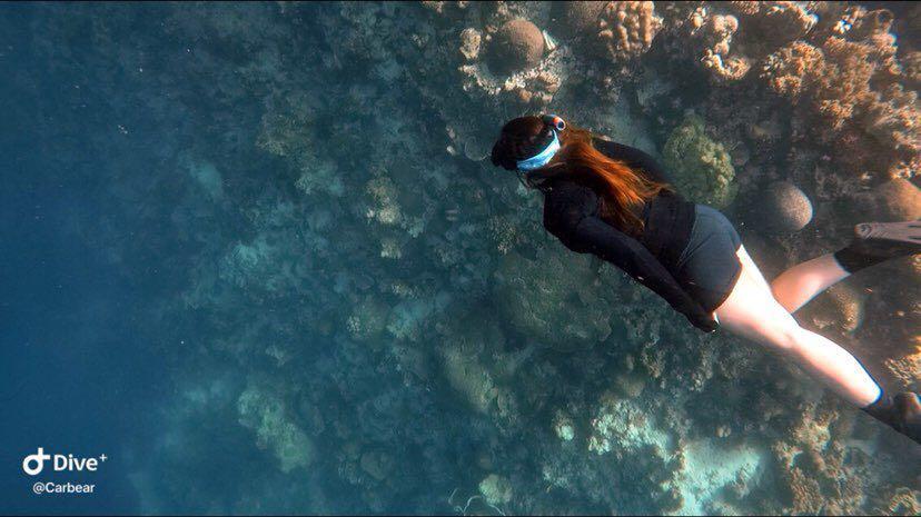 Dive+潜水员Carbear的精彩瞬间