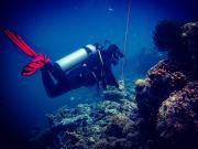 Dive+潜水员heffe69