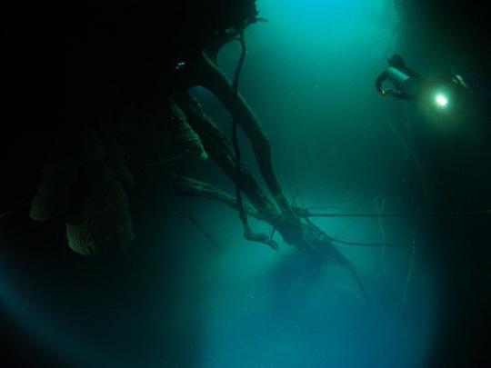 Dive+精彩瞬间,一起体验Cave Diving运动