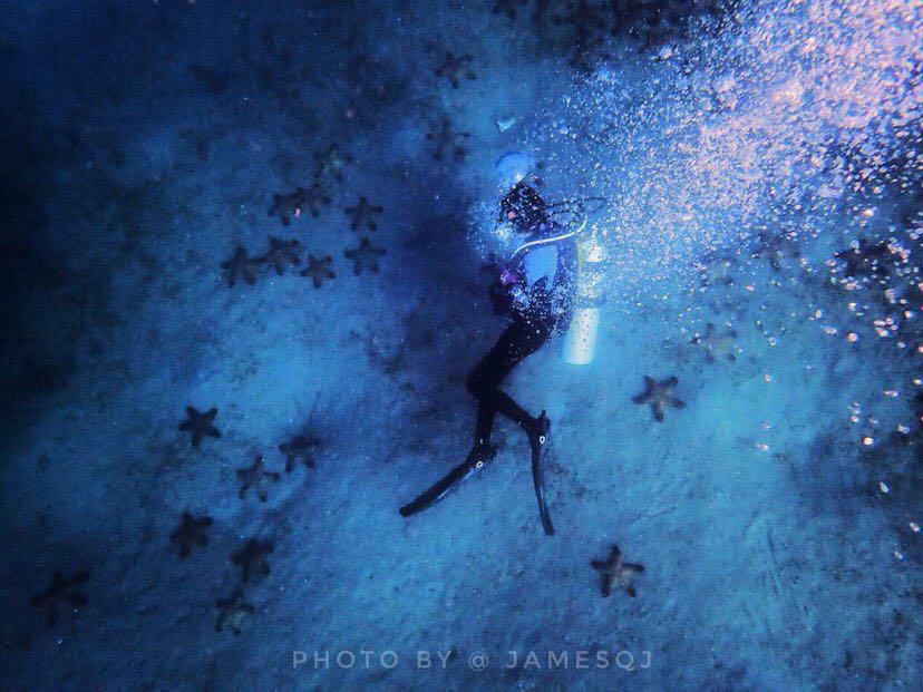Dive+潜水员xiannv的精彩瞬间