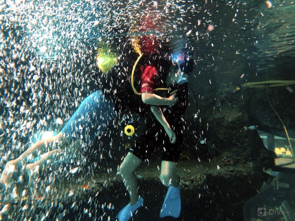 Dive+潜水员1993zwq的潜水日志