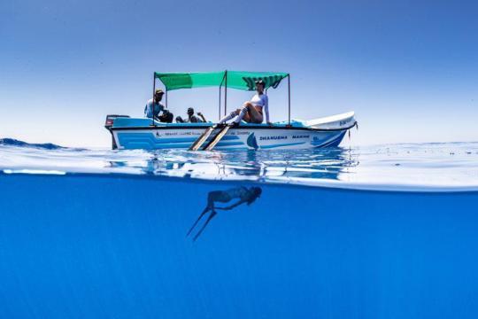Dive+精彩瞬间,一起体验在Trincomalee的潜水