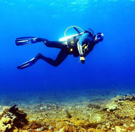 Dive+精彩瞬间,一起体验Sailing运动
