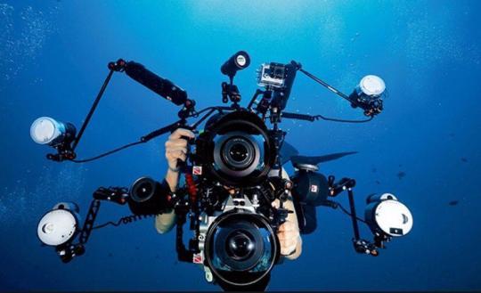 Dive+热门主题:#潜水有多烧钱