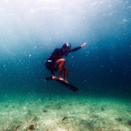 Dive+精彩瞬间,一起体验在Tawau的潜水