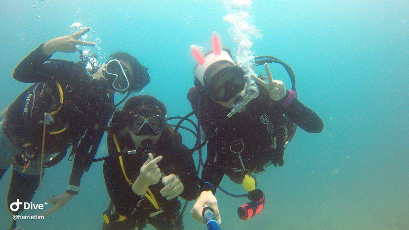 Dive+潜水员harrietlim的精彩瞬间