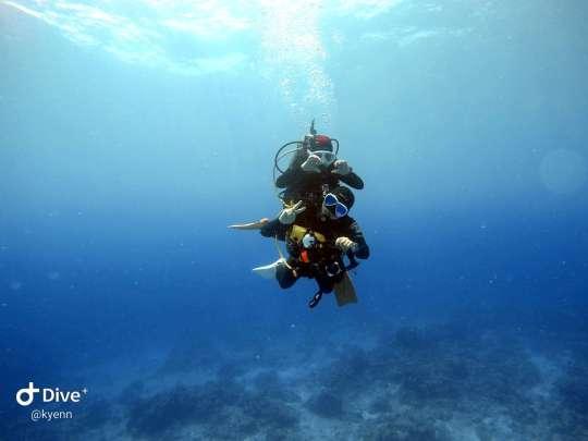 Dive+精彩瞬间,一起体验在Koror的潜水