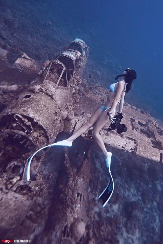 Dive+精彩瞬间,一起体验在Palau的潜水