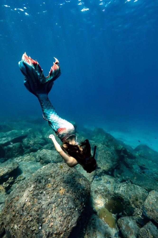 Dive+潜水员13011175689的精彩瞬间