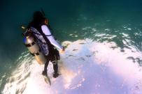 Dive+潜水员kevin3262
