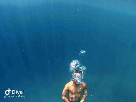 Dive+精彩瞬间,一起体验在West Papua的潜水