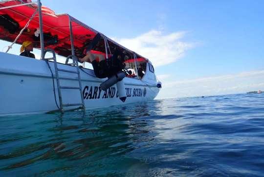 Dive+精彩瞬间,一起体验在Timba Timba Island的潜水