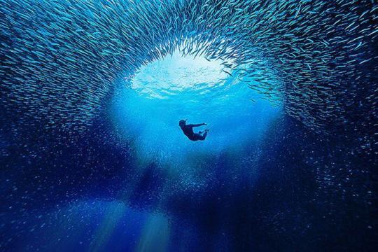Dive+热门主题:#穿越风暴