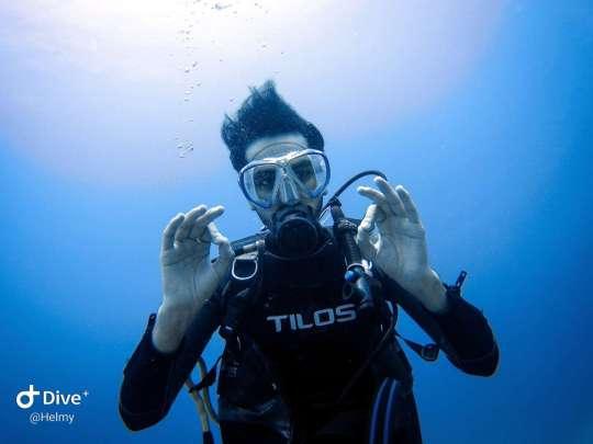 Dive+热门主题:#我的奇葩潜伴